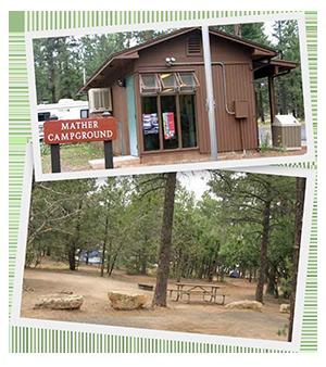 Mather Campground1